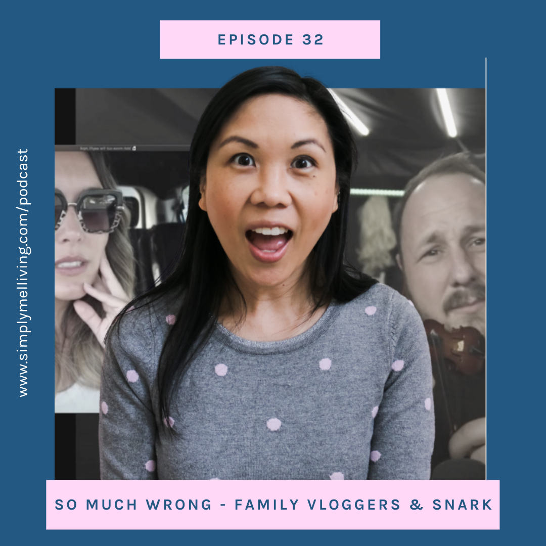 Episode 32: 50 Shades of Wrong – Family vloggers on YouTube and snark commentary